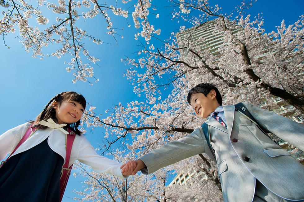 桜ロケ下丸子入学ランドセル土手ロケーション青空